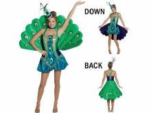 Peacock Costume Adult Std