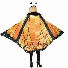 Cape Monarch Butterfly