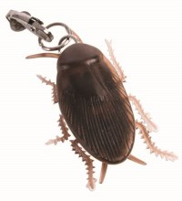 Earrings Cockroach