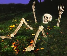 Skeleton Ground Lite Up