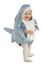 Shark Infant