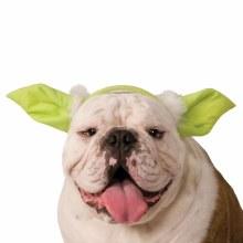 Yoda Dog Ears M/L