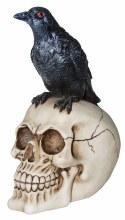 Skull w/ Crow