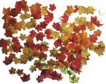Confetti Leaves