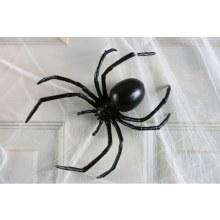 Spider Black Widow 6in