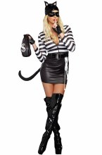 Cat Burgler Large