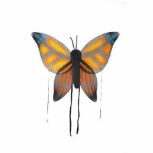 Wings Butterfly Orange