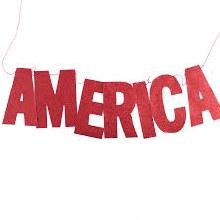 America Glitter Banner