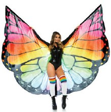 Cape Monarch Wings