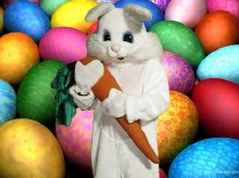 Bunny Suit Rental