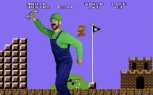 Rental Luigi Costume