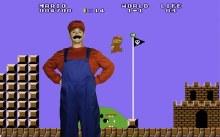 Rental Mario Costume