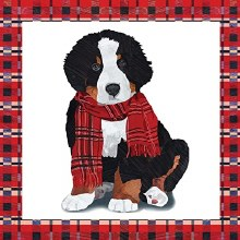 Noah Christmas Puppy Lunch Napkins ~ 20 Pack