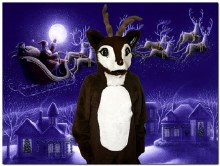 Rental Reindeer Mascot Adult 2