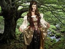 Rental Rennaisance Maiden Costume