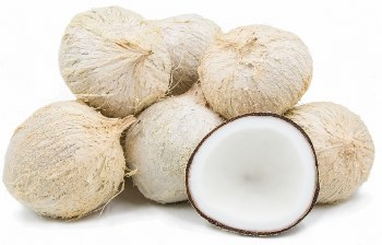 Coconut (california)  / Ea