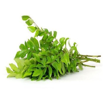 Fresh Curry Leaves /ea