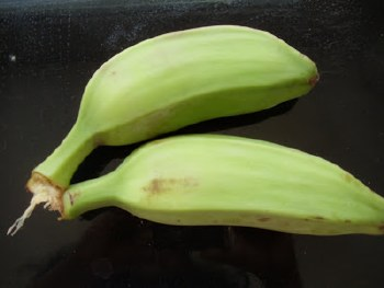 Green Plantain Small / Lb