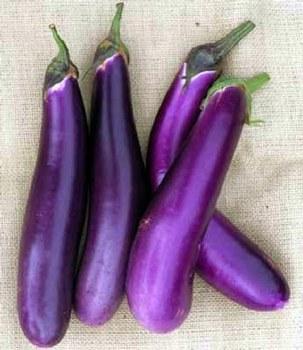 Eggplant Long (purple/gr) / Lb