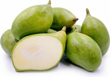 Baby Mango Green