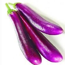 Eggplant Long (purple) / Lb