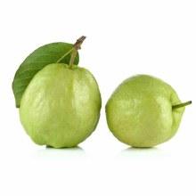 Thai Big Guava / Lb