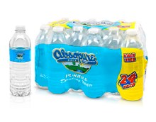 Absopure 16.9oz Purified Water 24 Pack