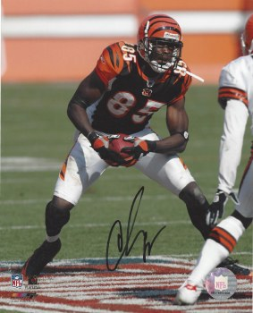 CHAD JOHNSON AUTOGRAPHED HAND SIGNED BENGALS 8X10 PHOTO