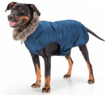 Esk Dog Coat Navy FUR