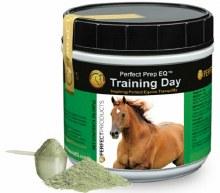 Training Day Powder