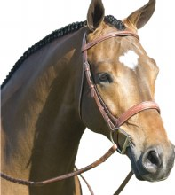 Pessoa Fancy Stitch Wide Band Bridle