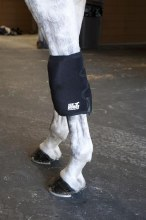 Ice Horse Knee Wrap Single