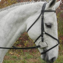 Red Barn Phoenix Figure 8 Bridle