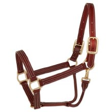 Leather Halter with Snap 1""
