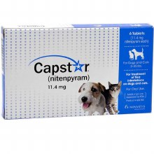 CAPSTAR Blue for Dogs or Cats 2-25 lbs