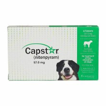 CAPSTAR Green for Dogs Over 25 lbs