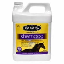 Corona Concentrated Shampoo