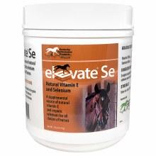 Elevate E&Se