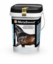 MetaSweat