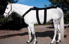 Ice Horse Blanket