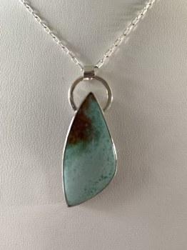 Opalized Petrified Wood Sterling Silver Pendant