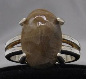 Petosky Ring