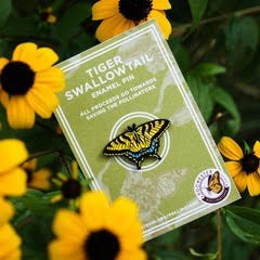Tiger Swallowtail Pin