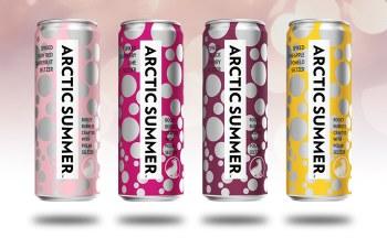 ARCTIC SUMMER SELTZER DAYTRIPPER 12PK CANS