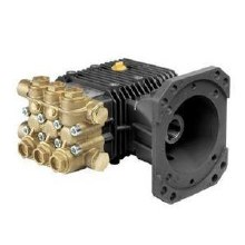Comet ZWD4040G Bare Replacement Pump