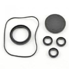 Oil Seal Kit 2188, for AR RSV Pump