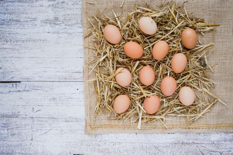 Organic Free Range Eggs1 dozen