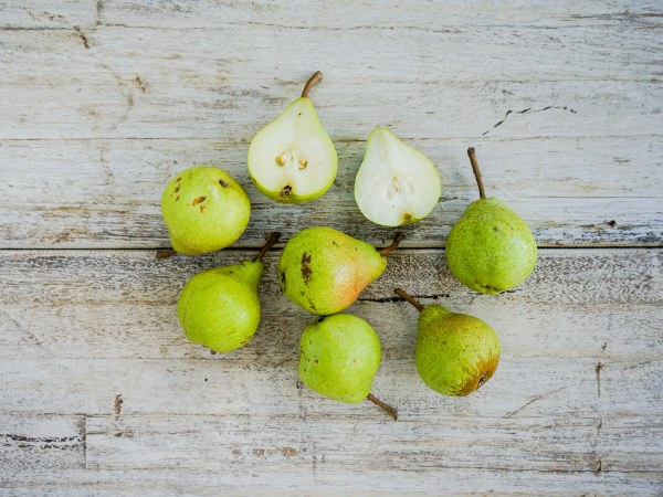 Organic Packham Pears