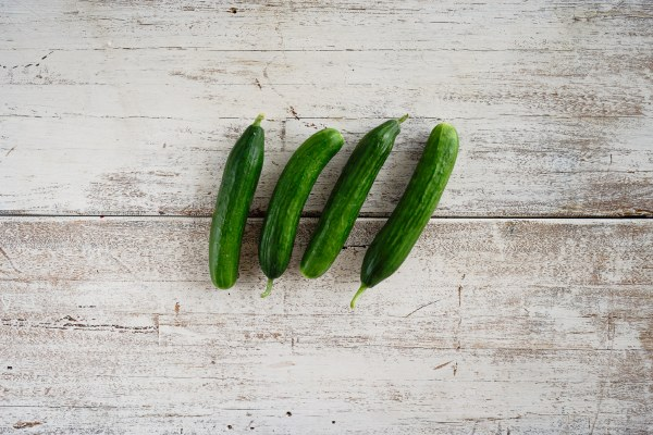 Organic Lebanese Cucumber  Each
