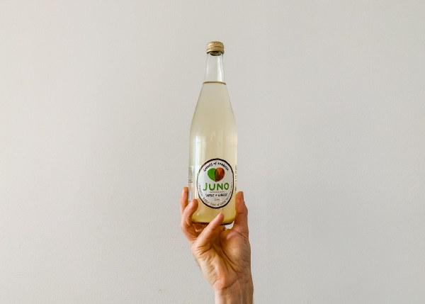 Organic Apple & Ginger Kombutcha